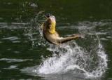 Город иваново: рыбалка, отдых и описание лучших мест
