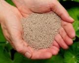 Семена чиа: как употреблять для похудения? Способы применения, правила, чай, инструкция, отзывы и результаты